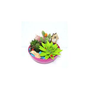 Composición de cactus
